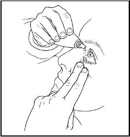 안약 사용법